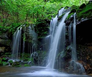 マイナスイオンが発生する滝壺